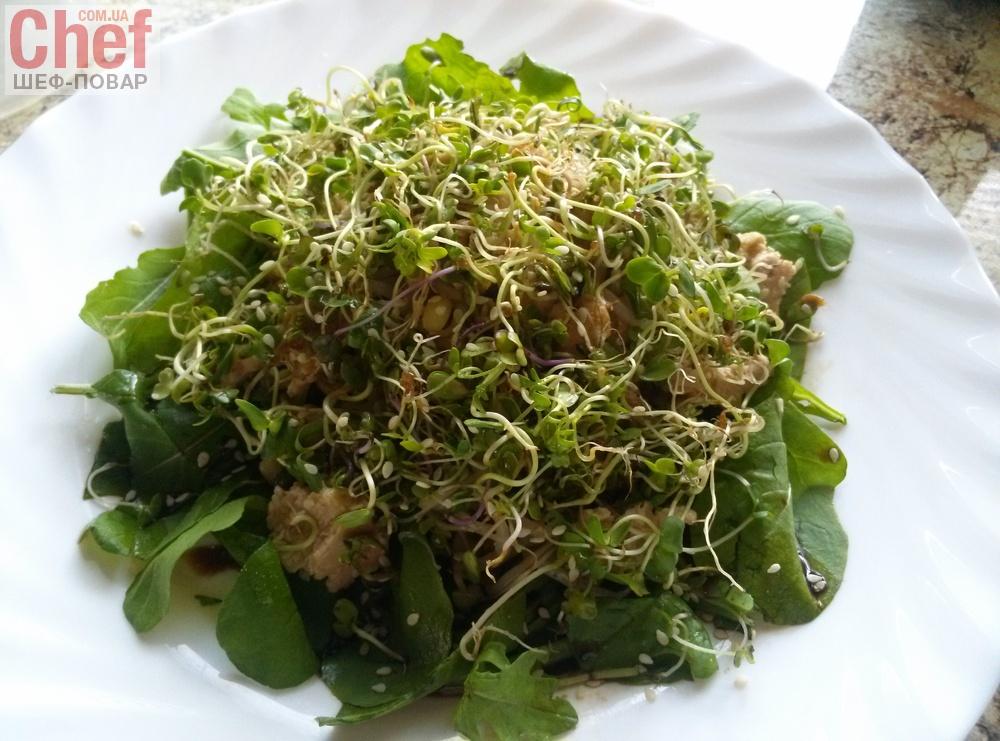 Салат з проростками маша і мікрозеленню